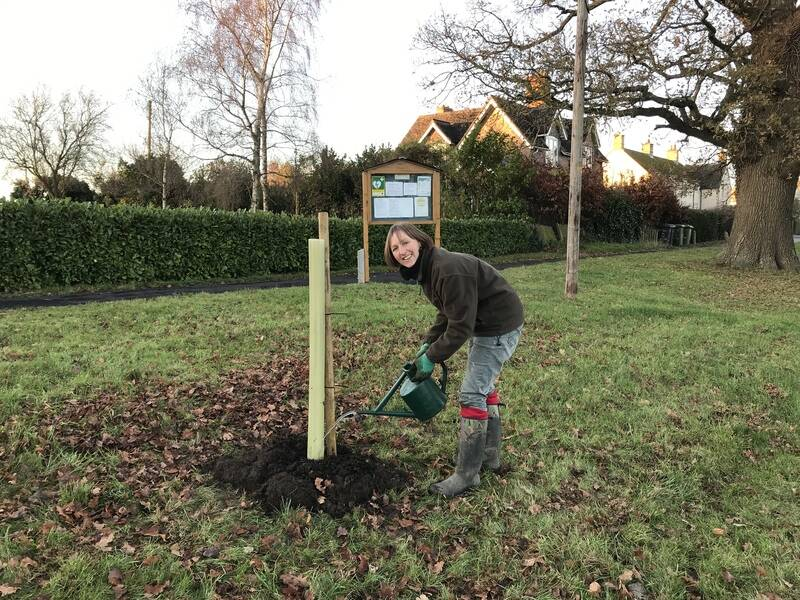 Heritage tree planting on the Green