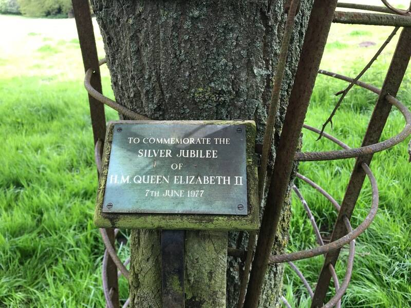 Tree planting ideas for Platinum Jubilee wanted